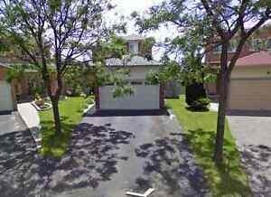Detached house **Whole House** for rent (Kennedy & Conestoga)