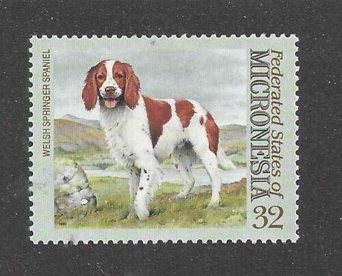 Dog Art Body Portrait Postage Stamp WELSH SPRINGER SPANIEL Micronesia MNH