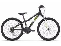 STUNNING AS NEW BOYS MOUNTAIN BIKE. RIDGEBACK MX24. PRISTINE CONDITION.