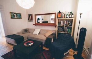 2 Bedroom Apartment Sublet from May to August