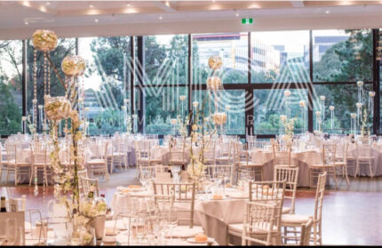 Wedding chair hire MELBOURNE Tiffany chair bentwood chair decorTiffany golden chair hire   Party Hire   Gumtree Australia  . Tiffany Wedding Chair Hire Melbourne. Home Design Ideas