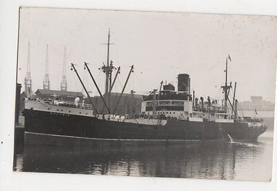 Bactria Plain Back Photo Card Shipping 122a