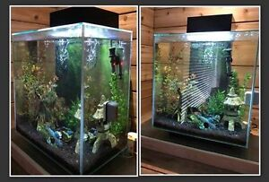 Fluval Edge 6 sided, 12 gal sealed glass aquarium