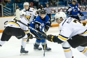Sea dogs tickets for sale