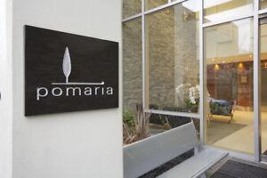2 bdrm; 2 bath - Pomaria Executive 3 floor Condo