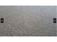 Oat beige carpet - Excellent condition - Over 15square meters - Underlay and gripper rods included