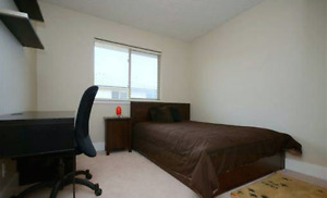 $2100 / 3br - LARGE 3 BED TOWNHOME, 1 KM FROM UVIC, BEAUTIFUL