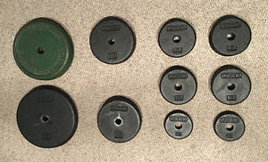 Set of weight plates (2.5, 5, 10 lbs)