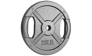 Northern Lights Regular Cast Iron Weight Plate, 25lbs WPR25