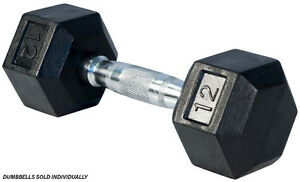 Northern Lights Rubber Hex Dumbbell, 12lbs DBHR012