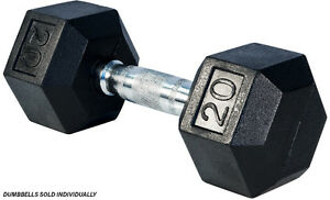 Northern Lights Rubber Hex Dumbbell, 20lbs DBHR020
