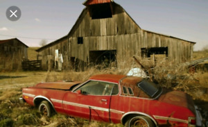 Looking for barn finds project cars forgotten vehicles