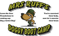 Mrs Ruff's Doggy Boot Camp