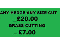 ***Any Hedge Any Size Cut £20.00*** All weather Gardening & Landscaping Grass Cutting From £7.00
