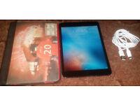 Apple Ipad Mini 32 GIG & Hard Carry Case