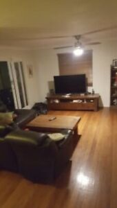 Spacious room available in cannon hill
