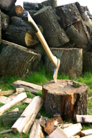 Looking  for wood jobs