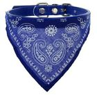 Cat Bandana-Style Collar