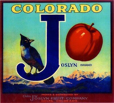 Cedaredge Delta Co. Colorado J Joslyn Bird Apple Fruit Crate Label Art Print for sale  La Verne