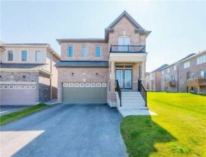 Absolutely Stunning Detached, with basement apartment!!!