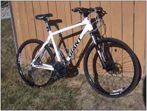 MINT Giant Roam One Hybrid Bike w/Hydraulic Disc Breaks $400 OBO