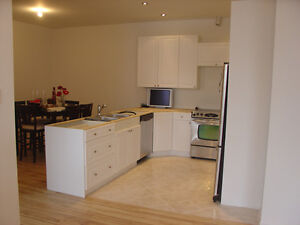 NICE LARGE 1-BEDROOM CONDO (1000sf) FOR RENT
