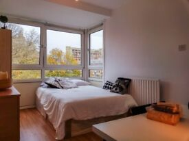 Come meet your best friends and a spacious double room near Canning Town