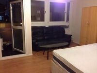 3/4 Bedroom Flat | Near Devons Road station