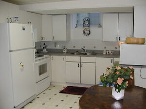 Belgravia Basement Suite for a Single Professional