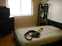 Cherch co loc / Great room for rent available June 1st