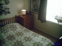 CHEAP! - Double Bedroom/Convenient Location - Central Southampton (University Approved!)