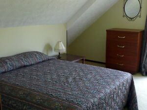 Wildturkey Guest House Rooms available