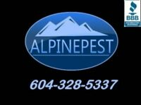 ANTS REMOVAL-CONTROL CERTIFIED SPECIALISTS – AVAILABLE 7 DAYS