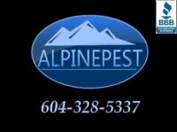 Effective bed bug, rodents, ant's removal or control treatments