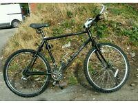 Marin Bear valley lightweight bike