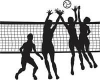 Ligue volleyball mixte récréatif / Recreational Mixed Volleyball