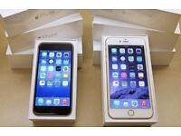 APPLE iPHONE 6 16GB & 64GB - GOOD CONDITION - SHOP RECEIPT & WARRANTY - ALL NETWORKS AVAILABLE