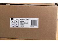Yeezy Boost 350 - Pirate Black