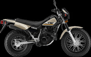 2020 Yamaha  TW200E Off Road  In Town