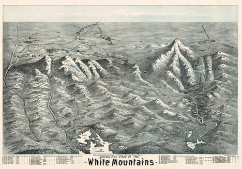 Birds eye view of the White Mountains c1890s repro 28x20