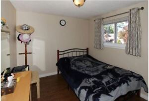 Beautifull & clean Furnished Scarbrough 1 person indian female.