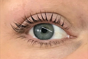 Rehaussement de cils Dolly's Lash Mirabel