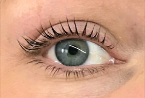Rehaussement de cils Dolly's Lash Mirabel 50$