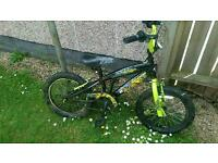 Boys bike going free