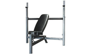 Brand name Olympic Bench Press Northern Lights