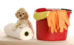doggy doo doo clean up
