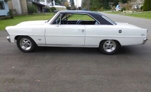 1967 Chevy II Nova S/S -  Muscle car