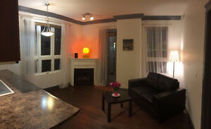 Furnished Dwntwn Condo 2 Bed 2 Bath 109 St/Jasper HEATED PARKING