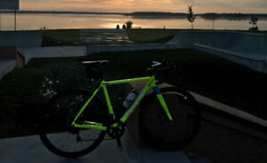 Cyclocross bike,  Garneau-Easton custom edition!!
