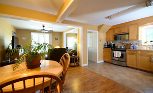 Spacious 2 level DOWNTOWN appartment, newly renovated